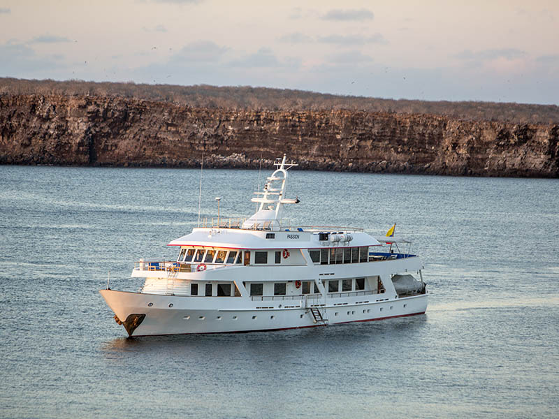 passion charter cruise in galapagos