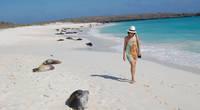 Andando Tours The Original Way To Enjoy A Galapagos Cruise - Galapagos vacations