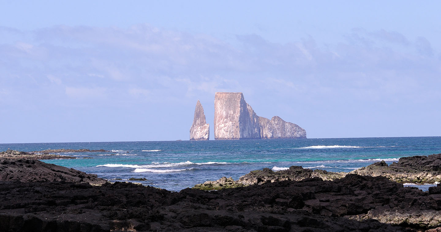 Eight reasons to love galapagos