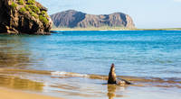 Best Galapagos Day Tours