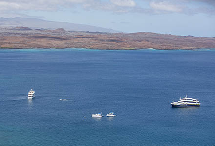 Galapagos tips choosing a cruise
